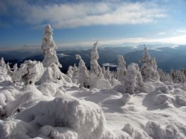 Выходные на Драгобрате, регулярный горнолыжный тур