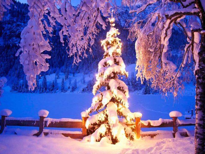 Новый год в Карпатах_лого 1